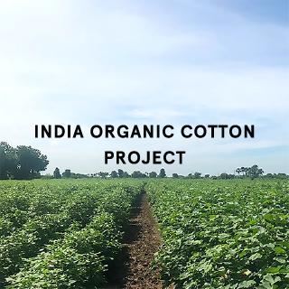 INDIA ORGANIC COTTON PROJECT