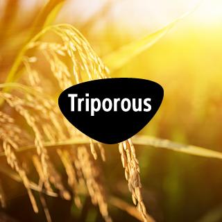Triporous